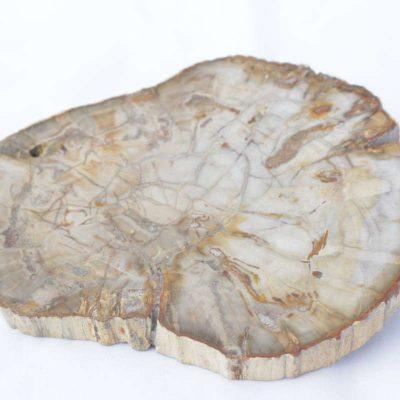 Kokos hout steen