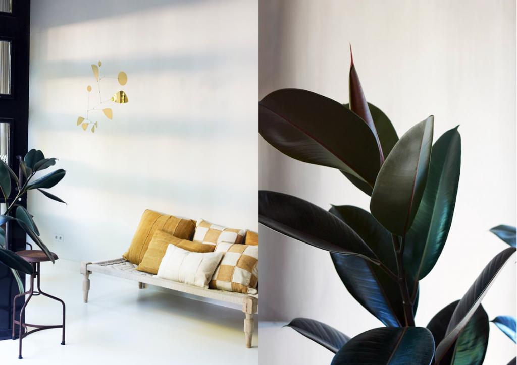 Inspirerend interieur design